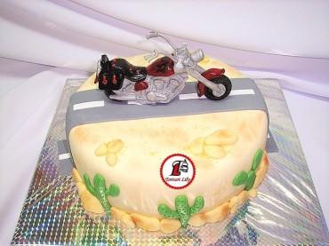 tort motocicleta 8